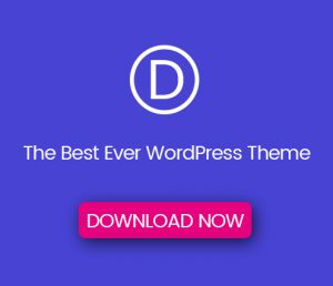 Download Best WordPress Theme