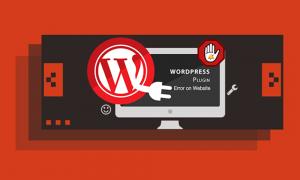 plugin errors in wordpress