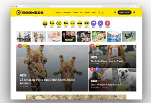BoomBox-Viral-Buzz-WordPress-Theme