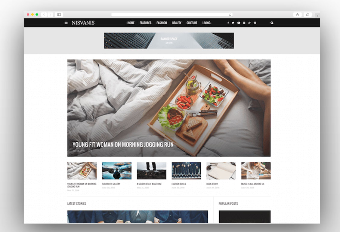NISVANIS viral wordpress theme