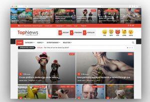 TopNews viral wordpress theme