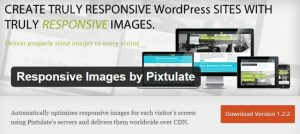 Responsive Images by Pixtulate
