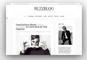 buzzblog-minimal-blog-wordpress-theme