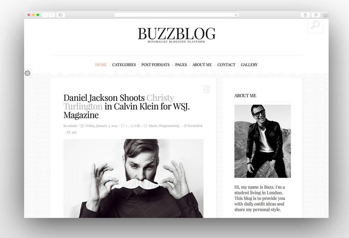 buzzblog-minimal-blog-wordpress-theme