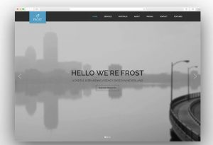 frost-business-theme