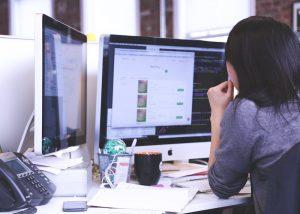 web developer career