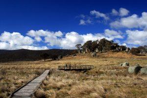 namadgi-national-park