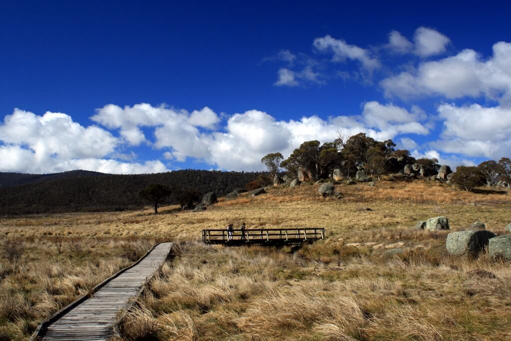 namadgi-national-park