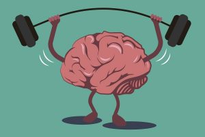 brain and weight