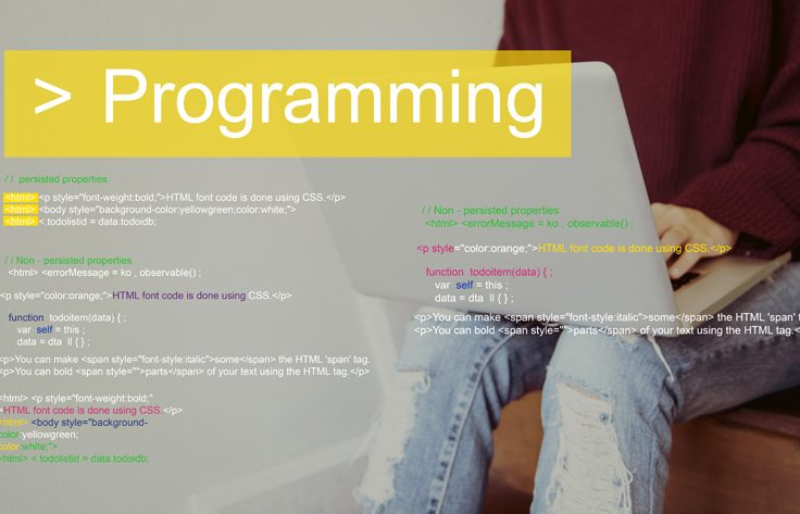 Programming Script Text Coding Word